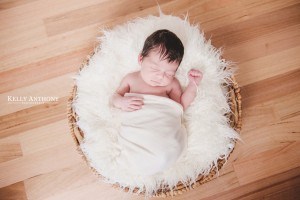 Newborn photography ivanhoe