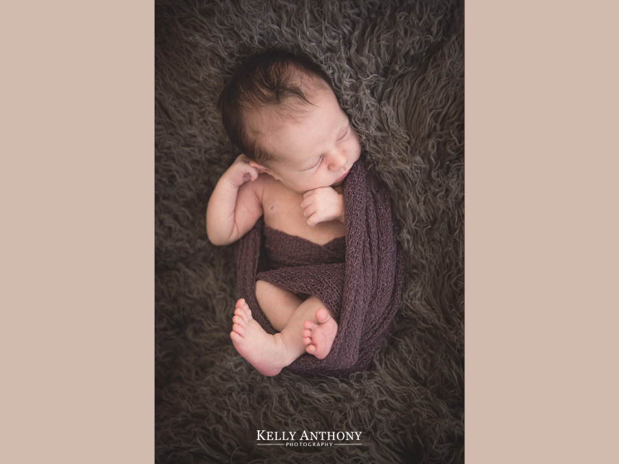 Hawthorn Newborn Photographer